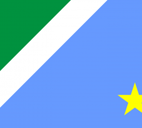 Bandeira do Mato Grosso do Sul, estado.