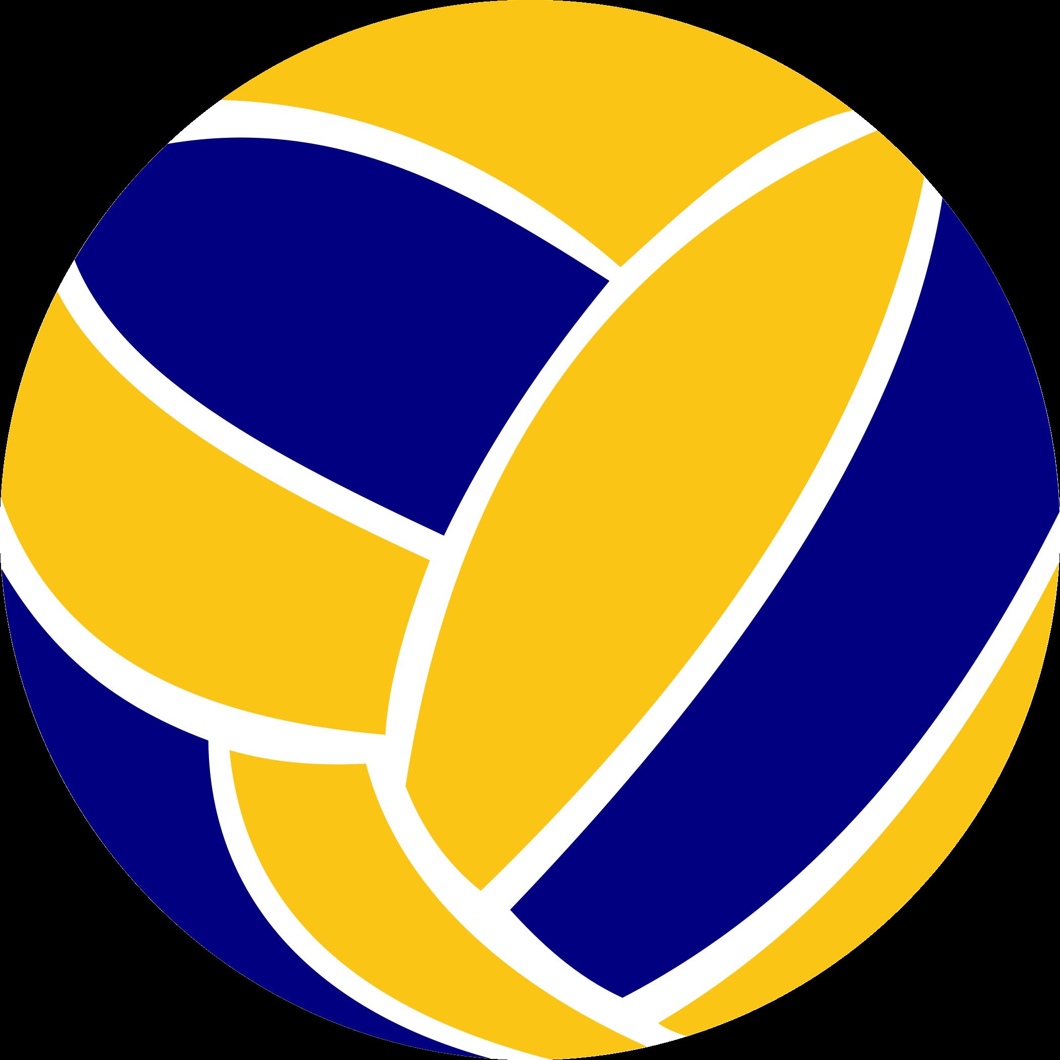 Bola de Voleibol.