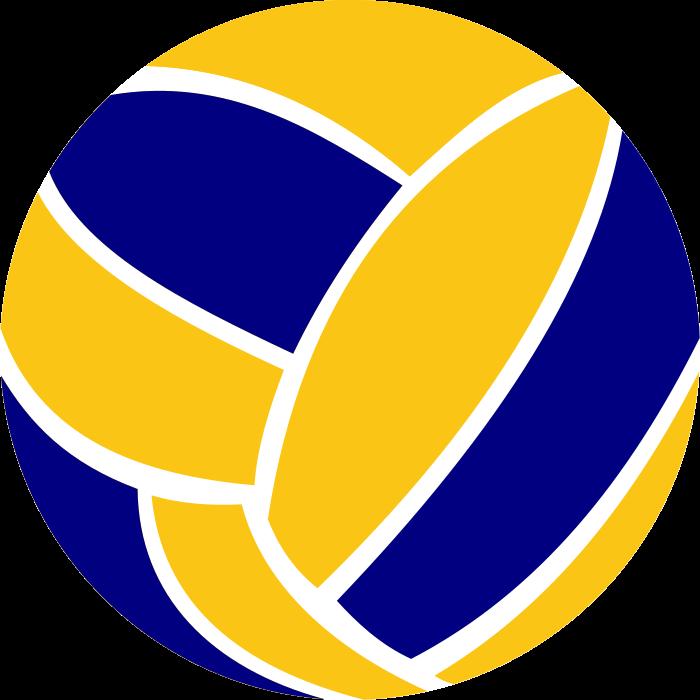 bola-de-voleibol-4