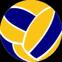bola-de-voleibol-6